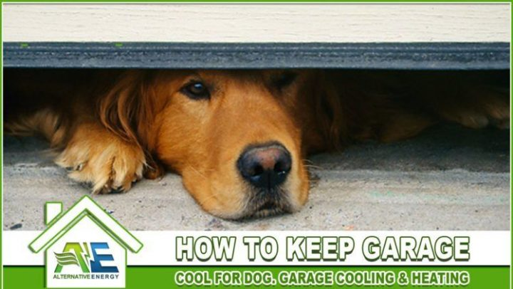 How-To-Keep-Garage-Cool-For-Dog
